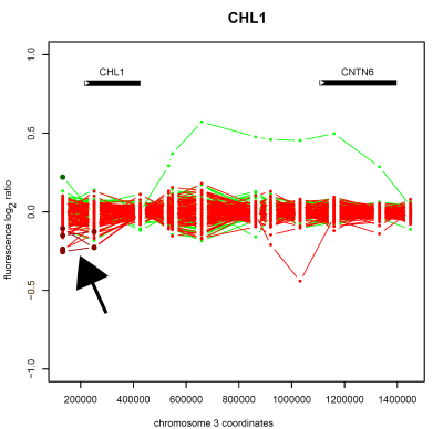 Detection of copy number deletion on chromosome 3 (arrowed) in the cell-recognition protein encoding gene <em>CHL1</em> in schizophrenic patient samples, as detected by whole-genome tiling path array CGH.